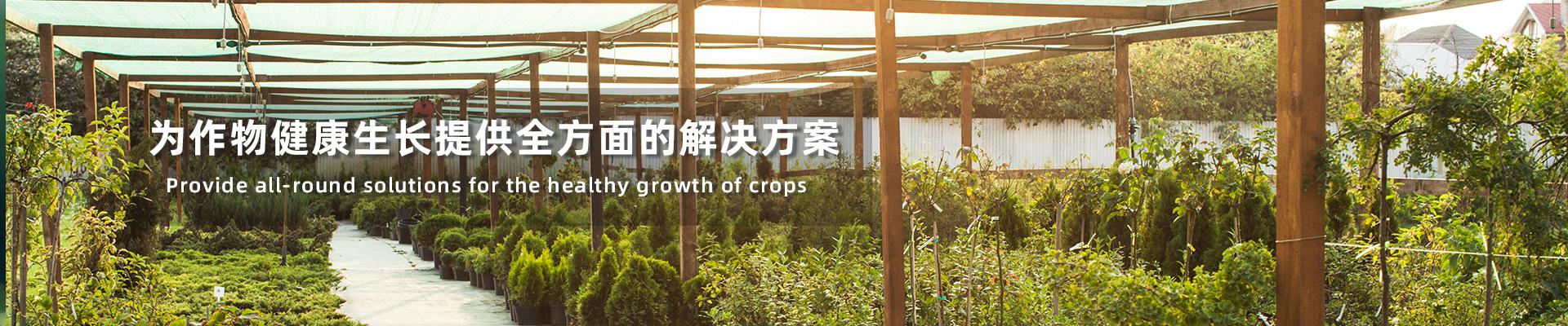 广东泥炭土批发广东泥炭土厂家
