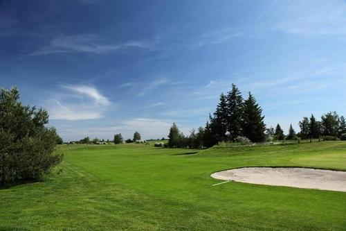 高尔夫球场泥炭土